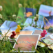 Dixit: Board Game for Kids